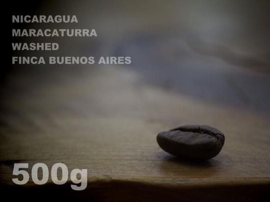 ニカラグア マラカトゥーラ ウォッシュド ブエノスアイレス農園 【500g】