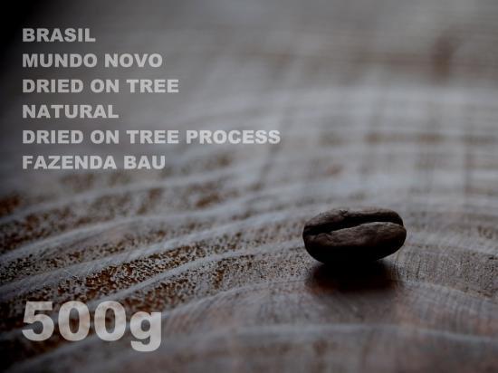 ブラジル ムンドノーボ ドライ・オン・ツリー ナチュラル ドライ・オン・ツリー・プロセス バゥ農園 【500g】
