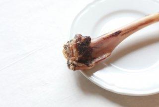 ジビエのおやつ・天然鹿の骨 1本