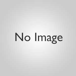 【カテゴリC】ホルミシスブレストバンド+ コスモシート(約30cmx15cm、1枚入り)