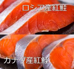 【食べ比べ】ロシア産塩紅鮭(5切れ)とカナダ産塩紅鮭(5切れ)のセット