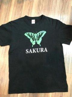 SAKURA T 2016 / Lサイズ