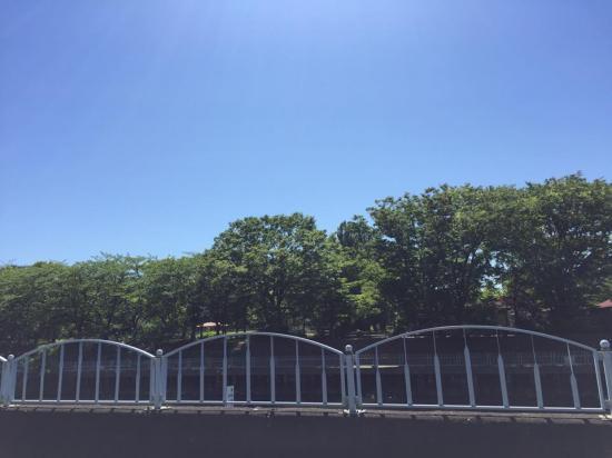 連日暑いね!【画像3】