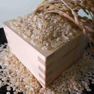 桑原さんの魚沼産コシヒカリ玄米5kg