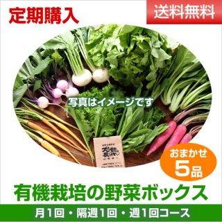 定期購入 有機野菜5品ボックス