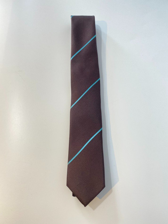 LITTLEBIG<br />Stripe Silk Tie / Brown <img class='new_mark_img2' src='https://img.shop-pro.jp/img/new/icons47.gif' style='border:none;display:inline;margin:0px;padding:0px;width:auto;' />