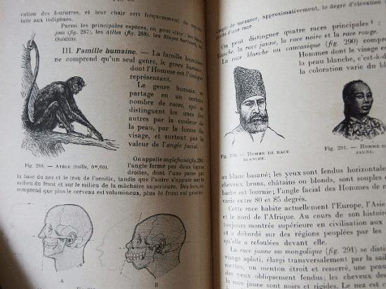 フランス アンティークの自然科学の本