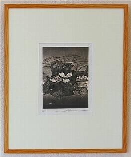 水と白い花/渡辺達正 (銅版画)