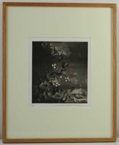 風と白い花/渡辺達正 (銅版画)