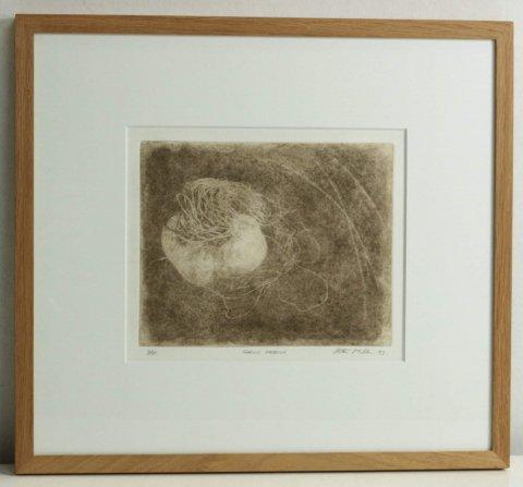 ガーリック・ネビュラ/ピーター・ミラー  (銅版画)
