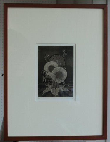銅版画集《夢草花図》から作品番号1/松崎滋 (銅版画)