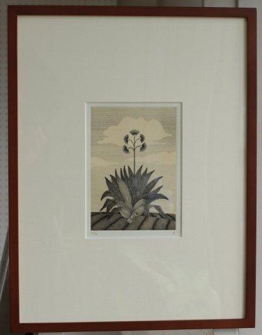 銅版画集《夢草花図》から作品番号4/松崎滋 (銅版画)