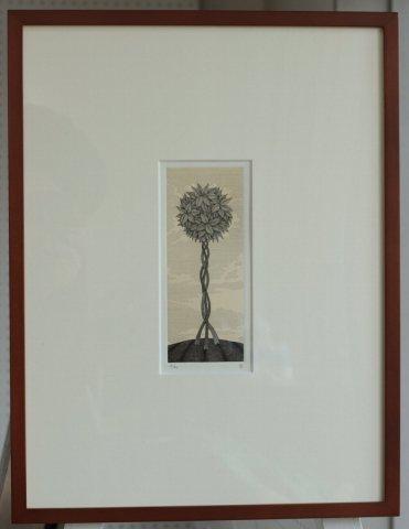 銅版画集《夢草花図》から作品番号11/松崎滋 (銅版画)
