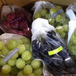 ふぞろいの葡萄たち 約2�