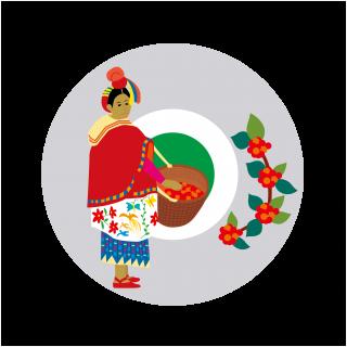 デカフェ・グァテマラ 500g (10%OFF)