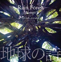地球の詩「熱帯雨林・恵みの森-Rain Forest」[ボルネオ](自然音) 小久保隆