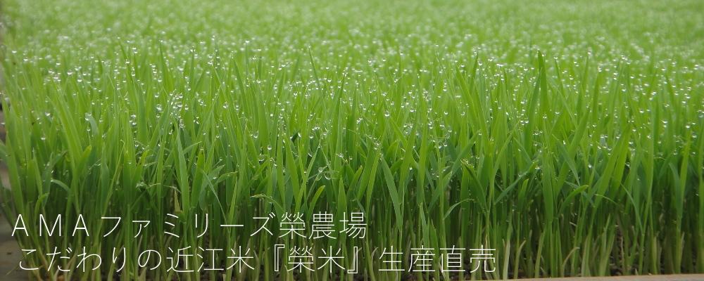 AMAファミリーズ榮農場 こだわりの近江米『榮米』生産直売