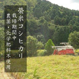 榮米コシヒカリ ペレット栽培農薬不使用 令和2年産