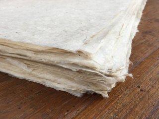ネパール 手漉き紙