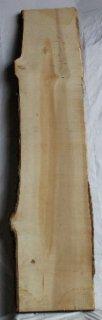 いちょう板 H2020 W400 D40 (自然乾燥材)
