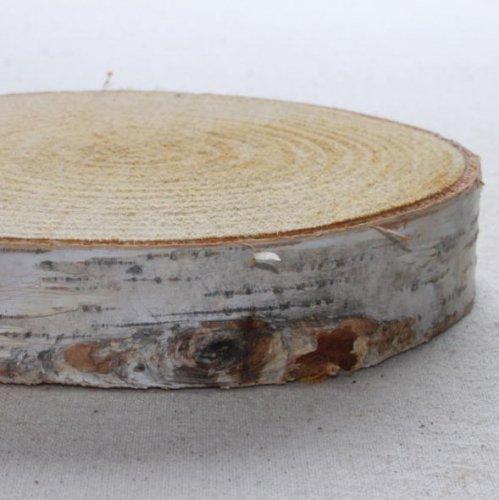 木の年輪板 しらかば 樹皮つき Sサイズ(15-20cm)
