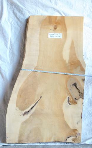 樹齢約200年 いちょう板 H1900 W940 D70 (自然乾燥材)
