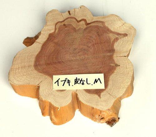 木の年輪板 いぶき 樹皮なし Mサイズ(21-24cm)