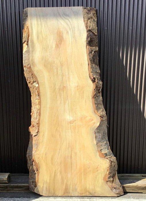 クス板 H2200 W560 D60(自然乾燥材)