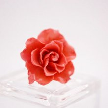 薔薇の指輪・ピンク