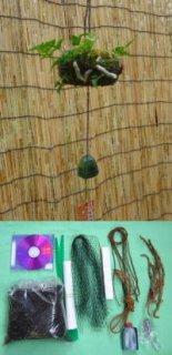 日本産つりしのぶ ミニ俵型材料セット