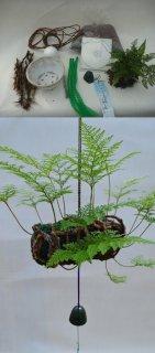 常緑つりしのぶ ミニ俵型材料セット