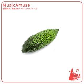 フルーツシェーカー ニガウリ BM3810-06 ミュージックカラーショップ(旧ミュージックアミューズ)