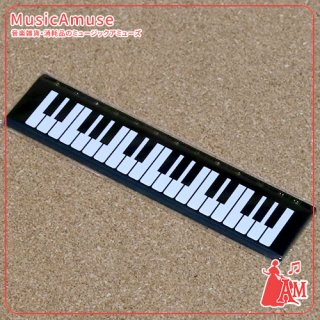 定規 ケンバン DC1015-01 ミュージックカラーショップ(旧ミュージックアミューズ)
