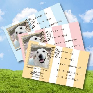 盲導犬サポータードッグ認定 名刺 1箱/100枚入り