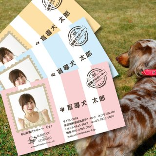 盲導犬サポーター認定 名刺 1箱/100枚入り