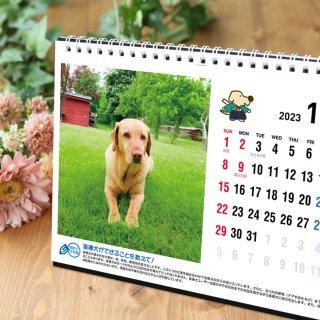 2022年 うちの子チャリティーカレンダー【卓上】10月よりお届け