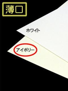 薄口【アイボリー】A4/200枚