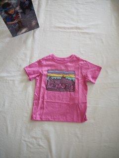 patagonia Baby Fits Roy Skies Organic T-Shirt [MBPI]