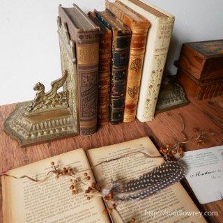 知の黄金を守る対の鷲獅子 / Antique Griffin Book Ends