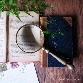 名声とは拡大鏡 / Antique Brass Magnifying Glass