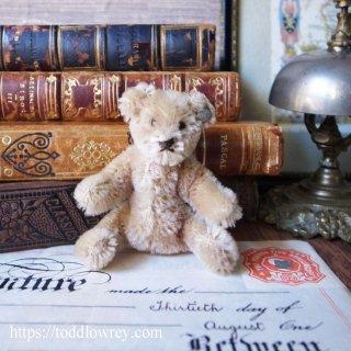 ドイツ生まれの正統派ベア / Vintage Steiff Baby Teddy Bear