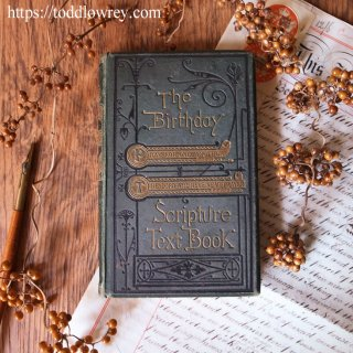 生まれた日に祈りあう言葉を確かめて /Antique Book