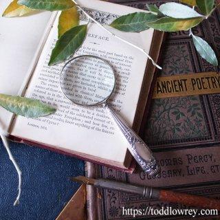カルトゥーシュをまとったフランスの拡大鏡 / Antique French Silver 800 Handle Magnifying Glass