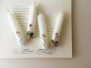 チチコグサとヒメツルソバの花言葉のろうそく (花言葉のカードつき)
