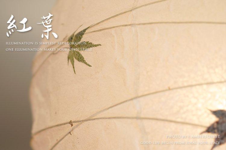 紅葉 [TP-16M] Fores 林工芸