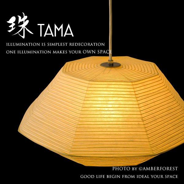 TAMA [珠] 照明作家 谷俊幸
