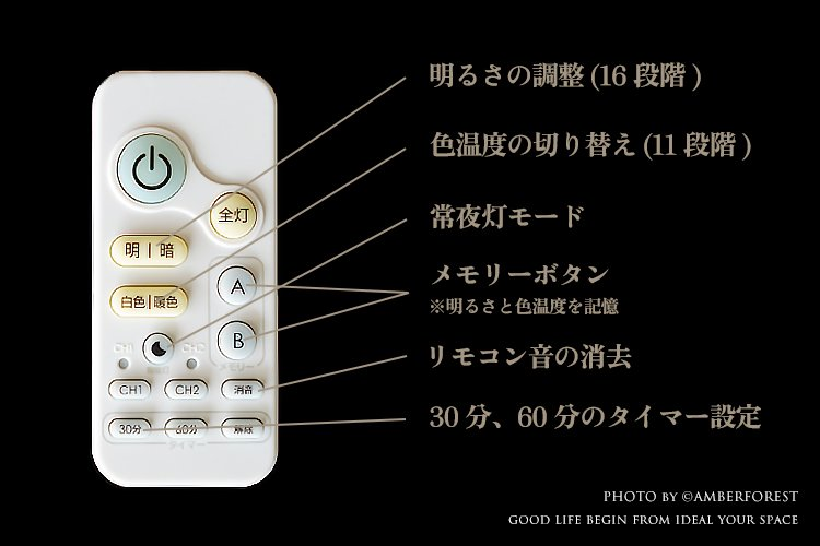 太白 [CL-50] Fores 林工芸