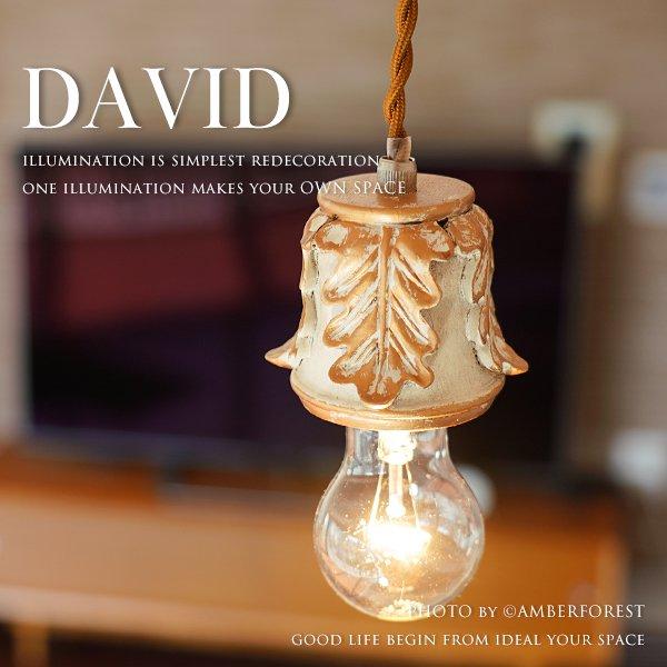 DAVID [GF020] DOUCE DOUCE