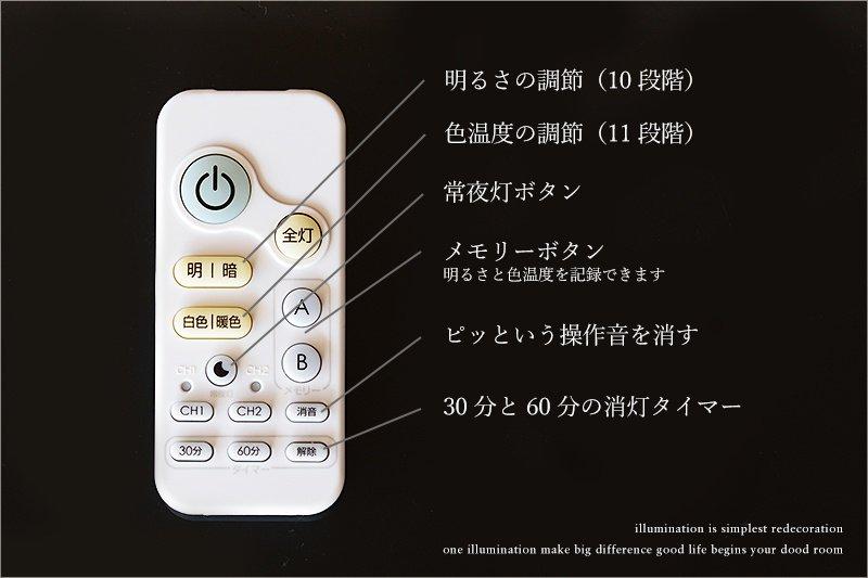 柳 (SCJ-0012) シーリングライト