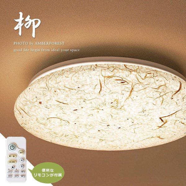 柳 [SCJ-0012] 彩光デザイン